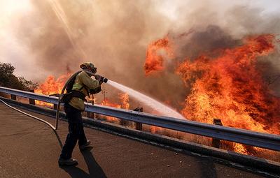 Число жертв пожаров в Калифорнии возросло до 84
