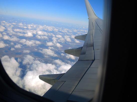 Стало известно о возможной остановке работы авиакомпаний в России