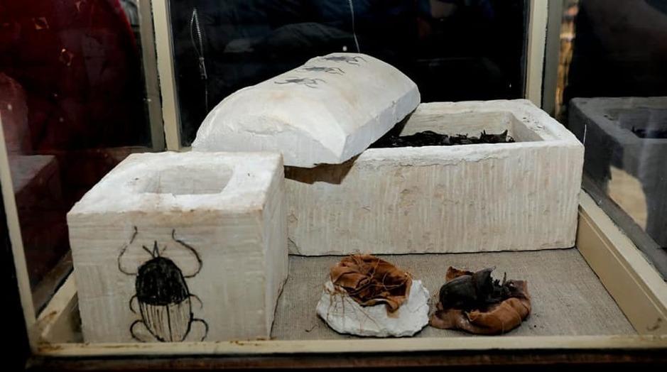 Семь гробниц с мумиями кошек обнаружены в Египте